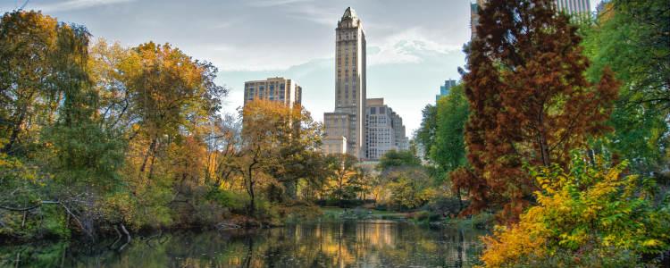 central-park-o-que-fazer-em-nova-york
