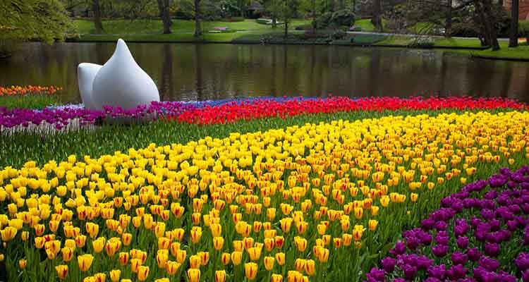 Keukenhof Park, na Holanda