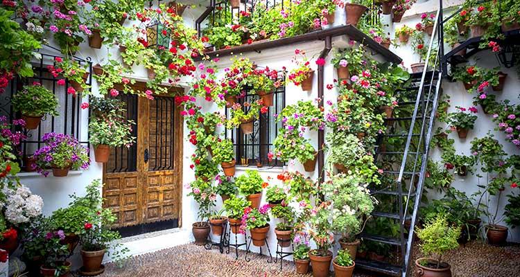 Pátios de Córdoba