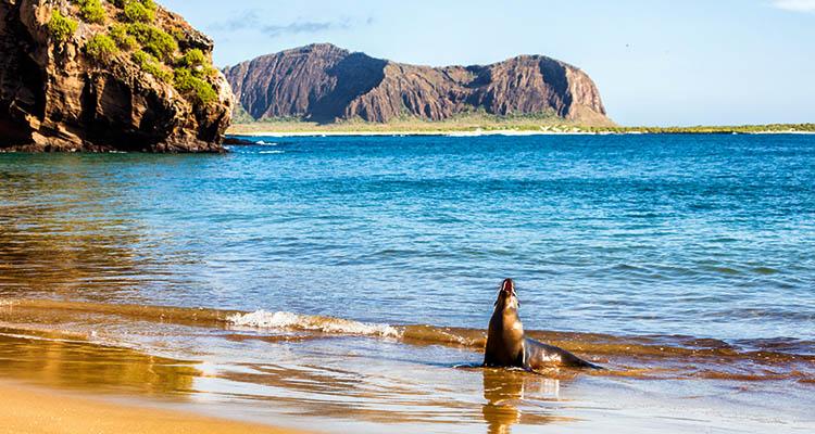 Ilha de Galápagos, uma das províncias equatorianas