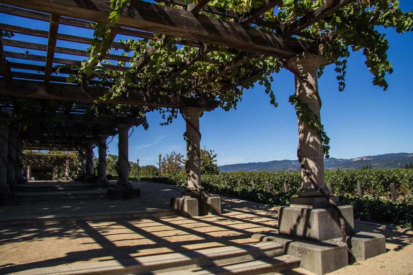 Wine-Train,-Napa-Valley-12